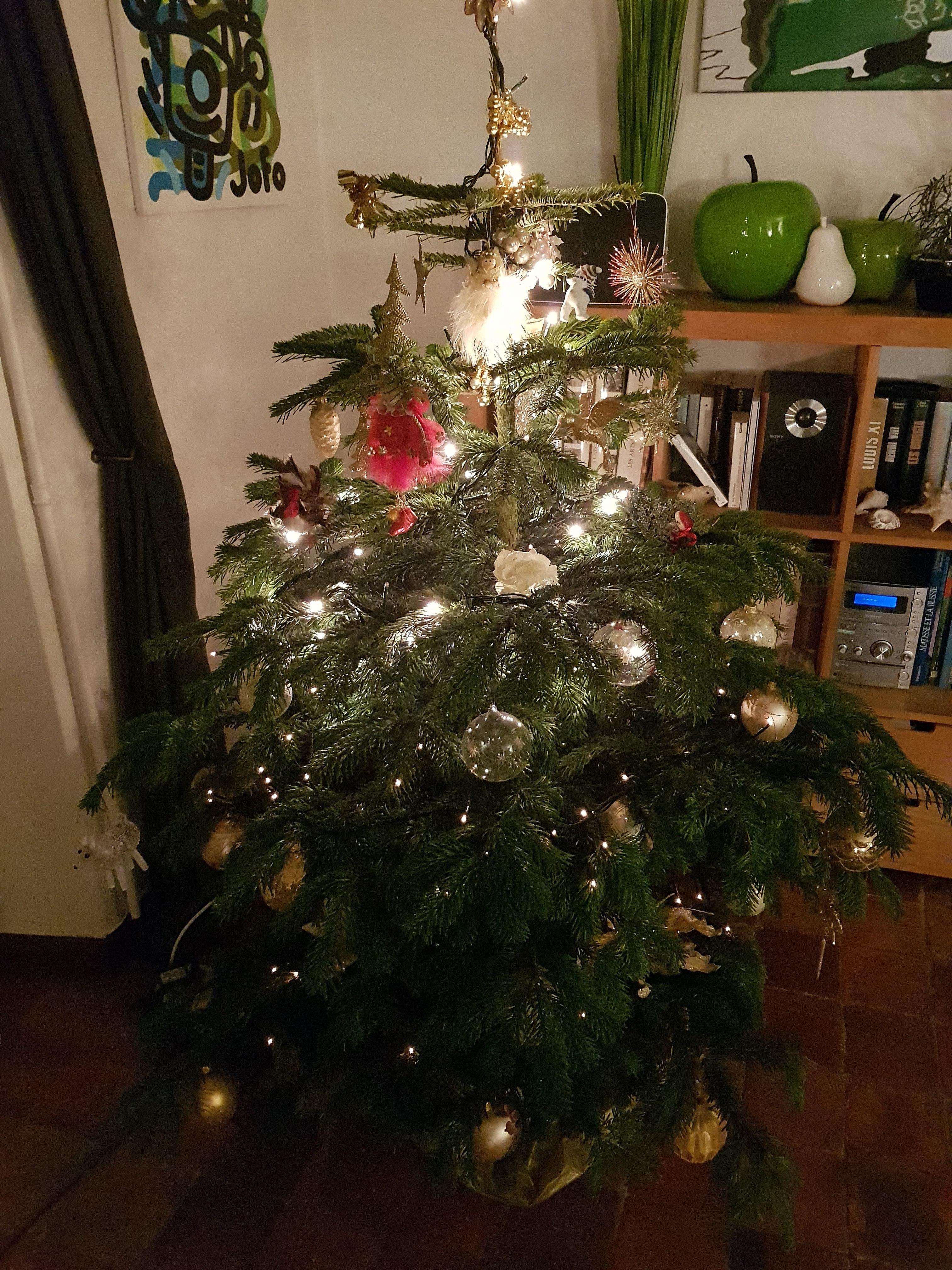 Sapin De Noel 240 File:Sapin de Noël 6.   Wikimedia Commons