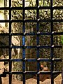 Scotland - Urquhart Castle - 20140424124534.jpg