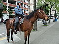Seattle Police officer on horseback.JPG