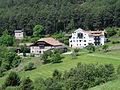 Seis, Laranzer Wald - panoramio - Frans-Banja Mulder.jpg