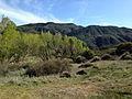 Sespe Wilderness Topography 4.JPG