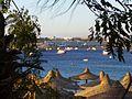 Sharm el Sheikh - panoramio (21).jpg