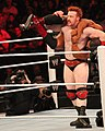 Sheamus White Noise.jpg