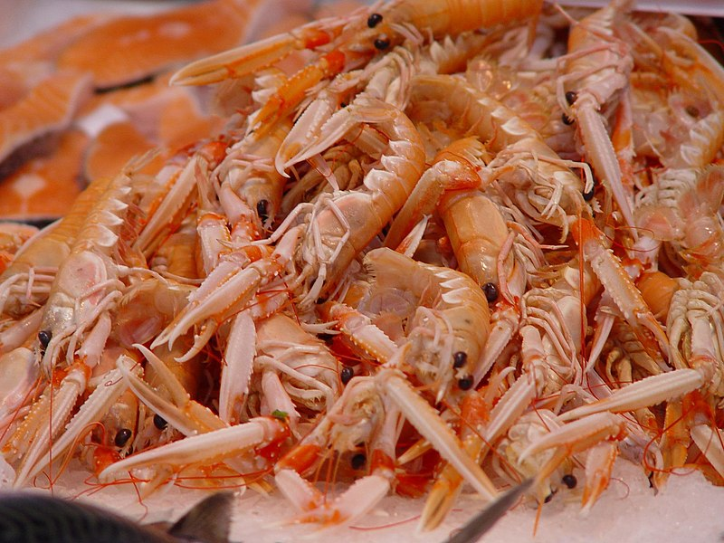 Fichier:Shrimps at market in Valencia.jpg