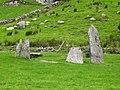 Shronebirrane Stone Circle - geograph.org.uk - 262694.jpg