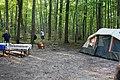Sibbald Point Provincial Park IMG 3103 (15198706559).jpg