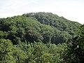 Siebengebirge Ölender.jpg