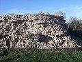 Silchester Roman city walls 25.jpg