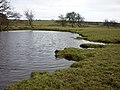 Small pond - geograph.org.uk - 1728361.jpg