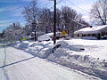 Snow-in-Maryland-Feb-09.JPG