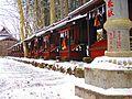 Snow - panoramio (48).jpg
