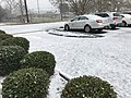 Snow in Valdosta, Jan 2018 c.jpg