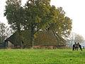 Soest, PvdBreemerweg bij 3 schaapskooi (3) GN0342wikinr48.jpg