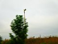 Southeast Madison Civil Defense Siren - panoramio.jpg