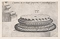 Speculum Romanae Magnificentiae- Doric Base MET DP870180.jpg