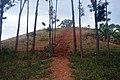 Spire Memorial - Mpumudde hill 1.jpg