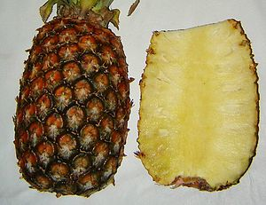 Ananas (Pineapple)