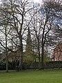 St Peter's Church Horbury - geograph.org.uk - 803949.jpg