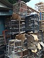 Stacks of cages in Jatinegara Market.jpg