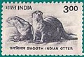 Stamp of India - 2000 - Colnect 161126 - Smooth coated Otter Lutra perspicillata.jpeg