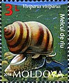 Stamps of Moldova, 2014-30.jpg