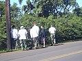 Starr-040105-0077-Maclura pomifera-hedge with MISC crew-Haiku-Maui (24401288010).jpg