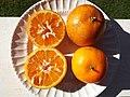 Starr-131204-2676-Citrus reticulata-Clementine fruit in half showing insides-Hawea Pl Olinda-Maui (25110038632).jpg