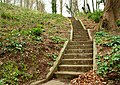 Steps at Minnowburn near Belfast - geograph.org.uk - 757044.jpg