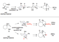 Stereochem anti vs syn on ring aza cope.tiff