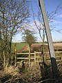 Stile and Footpath - geograph.org.uk - 122851.jpg