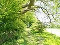 Straight Ahead - geograph.org.uk - 1318666.jpg