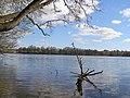 Straszyn jezioro 1.jpg