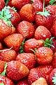 Strawberry, Yrevan - Armenia.jpg