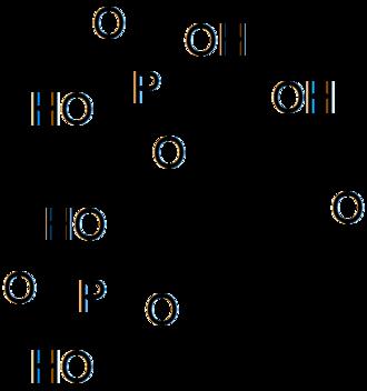 2,3-Bisphosphoglyceric acid - Image: Structure of 2,3 bisphosphoglyceric acid