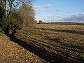 Stubble field - geograph.org.uk - 1055798.jpg