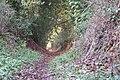 Sunken bridleway - geograph.org.uk - 81626.jpg
