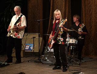 The Surfaris American surf rock band