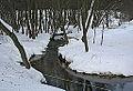 Talezh - panoramio.jpg