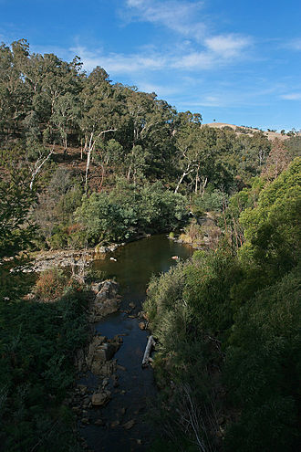 Tambo River (Victoria) - The confluence of the Tambo River and the Haunted Stream near Tambo Crossing