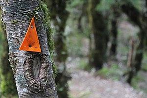 New Zealand tramping tracks - Track marker in Tararua Forest Park