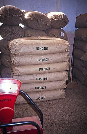 Ludewa District - Tebags at Luponde tea factory, 19992