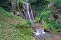Tengen Blumenfelder Wasserfall.jpg