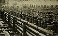 The American sugar industry; (1915) (17975241889).jpg