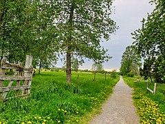 The Green Path.jpg