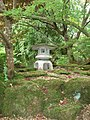 The Japanese Garden at St Mawgan - geograph.org.uk - 1422531.jpg
