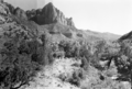 The Watchman. ; ZION Museum and Archives Image 9192 ; ZION 9192 (91d141c33b4f4fc98087c7a2ca963da2).tif