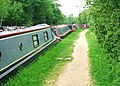 The canal towpath from Thrupp to Shipton-on-Cherwell - geograph.org.uk - 794781.jpg