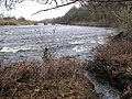 The confluence of a minor tributary with the River Tyne - geograph.org.uk - 1073530.jpg