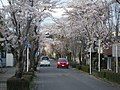 The front approach to Nogi Shrine, Nasushiobara.jpg