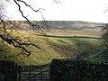 Thwaite Scars - geograph.org.uk - 271948.jpg